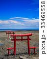 海中鳥居 鳥居 干潟の写真 33469558