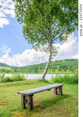 湖畔の風景 33475044