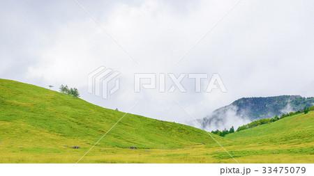 高地の草原 33475079