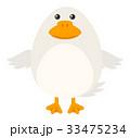 白背景 切り抜き 鳥のイラスト 33475234