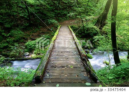 森の中のハイキングコース 33475404