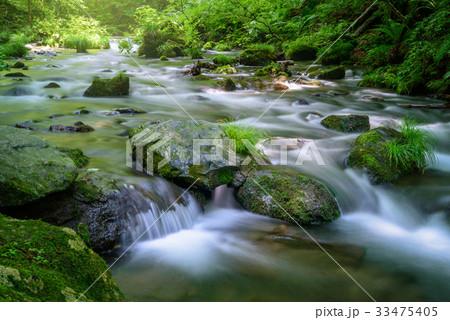 森の渓流 33475405