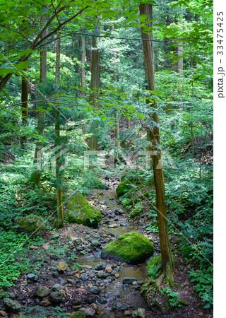 森の渓流 33475425