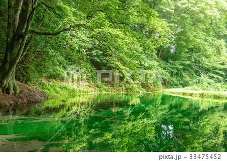 森の中の池 33475452