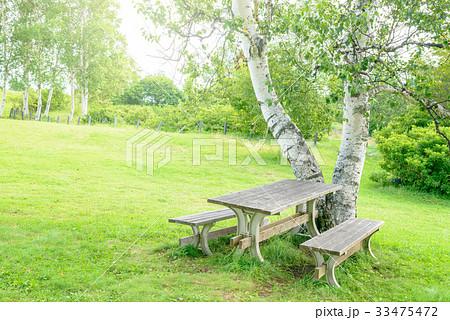 高原のテーブル 33475472