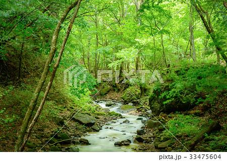 森の渓流、長野県、上田市、角間渓谷。 33475604