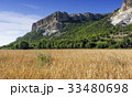 Field of wheat with mountainous backdrop 33480698