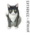 猫 ねこ 子猫のイラスト 33484143
