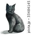 猫 ねこ 子猫のイラスト 33484145