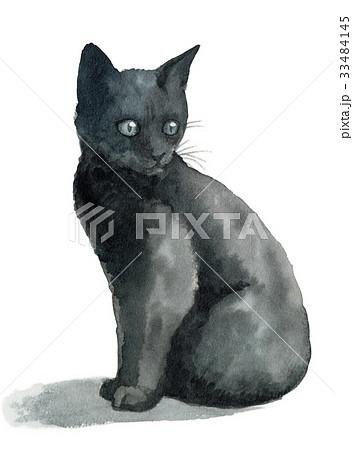 黒子猫 33484145