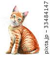 猫 ねこ 子猫のイラスト 33484147