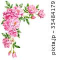 ピンクのバラの上部フレーム素材 33484179