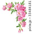 ピンクのバラの上部フレーム素材 33484181
