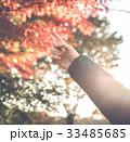 秋 モミジの紅葉 紅葉狩りの写真 33485685
