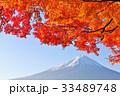 富士山と秋の紅葉 33489748