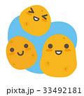 じゃがいも 芋 野菜のイラスト 33492181