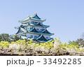 名古屋城天守閣と藤 北側から 33492285