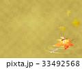 メダカと赤とんぼヨコ(金) 33492568