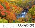 八幡平 松川渓谷の紅葉 33495425
