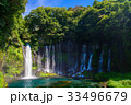 【静岡県】夏の白糸の滝 33496679