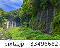 【静岡県】夏の白糸の滝 33496682