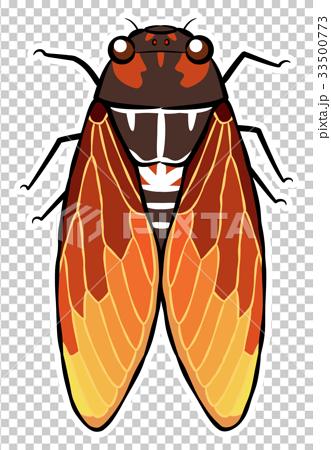 cicada, vector, vectors 33500773