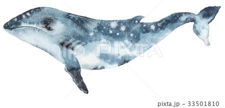 Watercolor blue whale 33501810