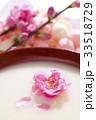 桃の花と甘酒 33518729