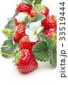 苺と白の花 33519444