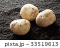 土の上のジャガイモ 33519613