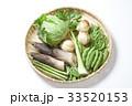 春野菜の集合写真 33520153
