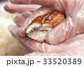 調理手袋で握る寿司 33520389