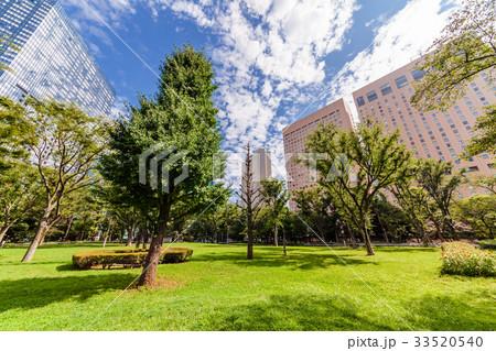 さわやかな朝の新宿中央公園 33520540