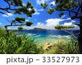 沖縄 ヒズシビーチ 阿嘉島の写真 33527973