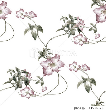 Watercolor painting of leaf and flowers patternのイラスト素材 [33536372] - PIXTA