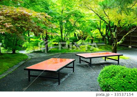 永観堂の庭園 33537154