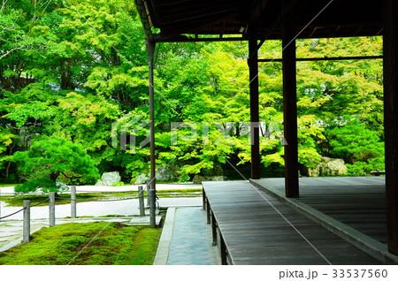 天授庵の庭園 33537560
