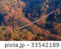 ほしだ園地 星のブランコ 吊り橋の写真 33542189