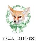 きつね キツネ 狐のイラスト 33544893