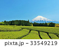 富士山 青空 茶畑の写真 33549219