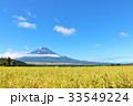 富士山 青空 秋の写真 33549224