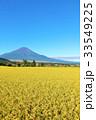 富士山 青空 秋の写真 33549225