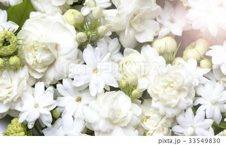 White jasmine flowers fresh flowers natural 33549830