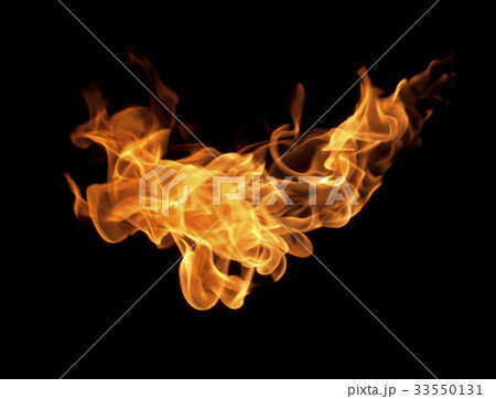 Fire flames on a black background 33550131