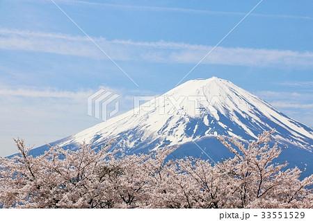 富士山と桜 33551529
