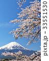 富士山 春 花の写真 33551530