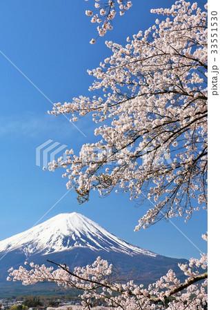 日本の春 富士山と桜 33551530