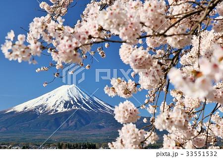 日本の春 富士山と桜 33551532
