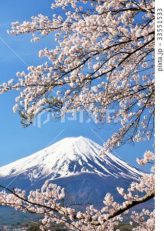 日本の春 富士山と桜 33551533
