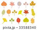 紅葉 秋 葉のイラスト 33588340
